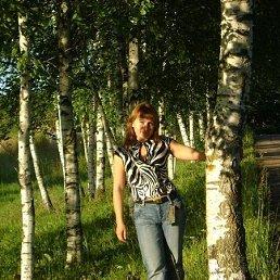 Светлана, 41 год, Зубцов