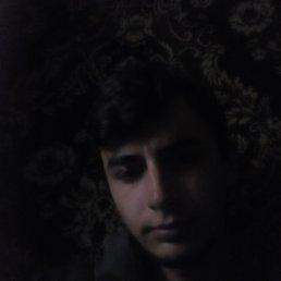 Анатолий, 22 года, Кельменцы