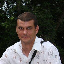 Андрей, 41 год, Новгород-Северский