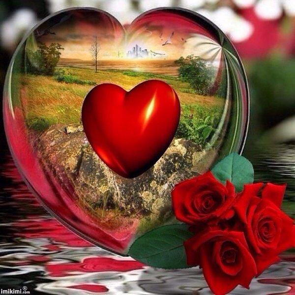 картинки дорогому сердцу тех под вполне