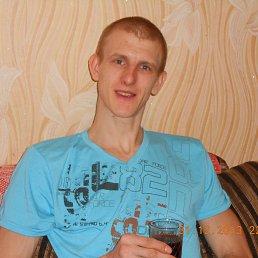 Иван, 30 лет, Губкин