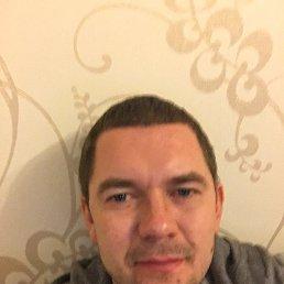 Григорий, 28 лет, Дубна