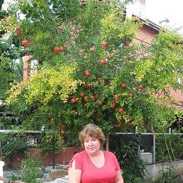 Елена, 48 лет, Воронеж