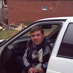 Евгений, 36 лет, Болгар