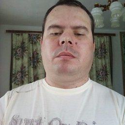 Руслан, 36 лет, Городище