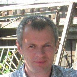 Сергей, 42 года, Коростень