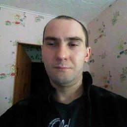 Андрей, 30 лет, Гуково
