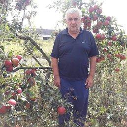 Антон, 62 года, Мукачево