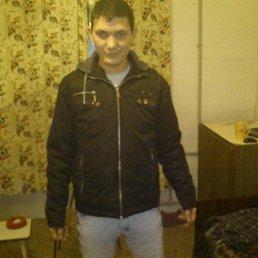 Руслан, 29 лет, Королев