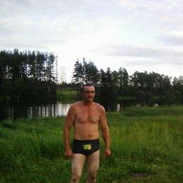 Андрей, 39 лет, Велиж