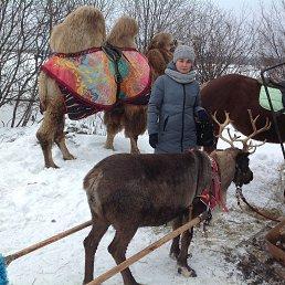 Светлана, 41 год, Сыктывкар