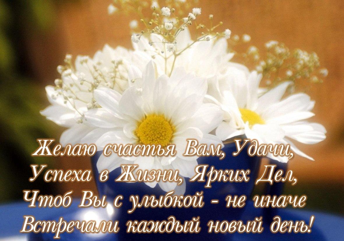 Стихи поздравления с пожеланием удачи и успеха