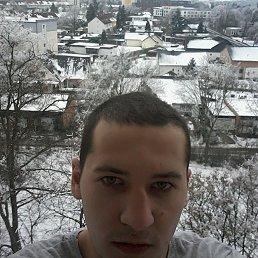 Артур, 24 года, Никополь