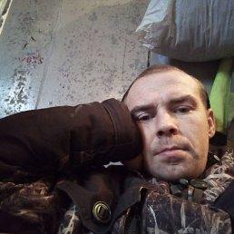 Павел, 32 года, Выползово