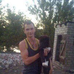 Павел, 25 лет, Михайловка