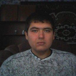 Александр, 29 лет, Кореновск