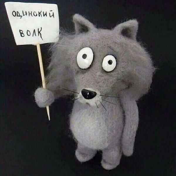 Одинокий волк прикольная картинка, открытки днем