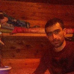 Амир, 32 года, Москва