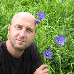 Егор, 48 лет, Самара