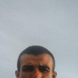 Aleksei, 28 лет, Новороссия