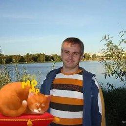 Dimon, 46 лет, Конаково