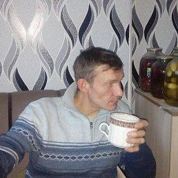 Юрий, 39 лет, Ярославль