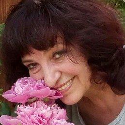 Лида, 65 лет, Львов