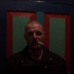 Николай, 29 лет, Кировоград