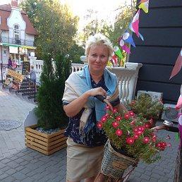 ТАТЬЯНА, 54 года, Калининград