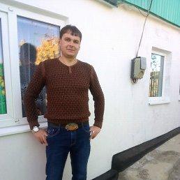 Константин, 39 лет, Моспино