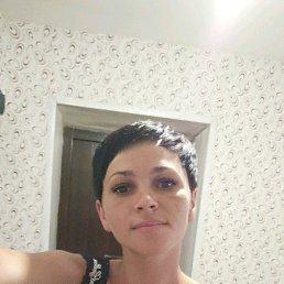 Эльвира, 36 лет, Краснодар
