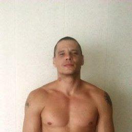 Михаил, 29 лет, Ливны