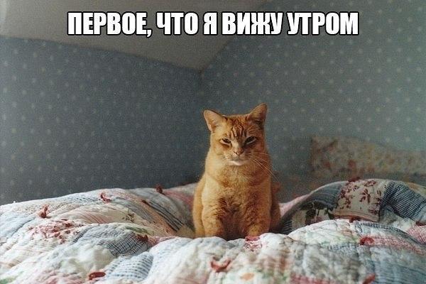 Хорошего всем дня)!