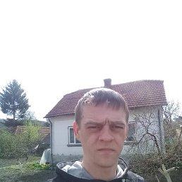 Богдан, 29 лет, Бережаны
