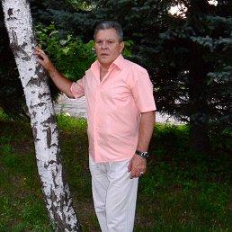 Владимир, 63 года, Бахмут