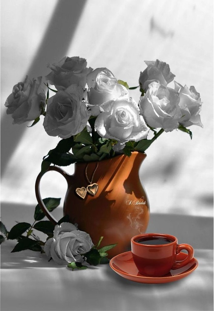 фото фото черно белое с добрым утром такими