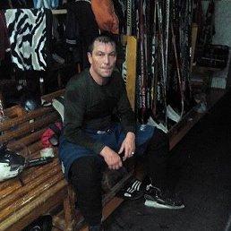 Николай, 54 года, Междуреченск