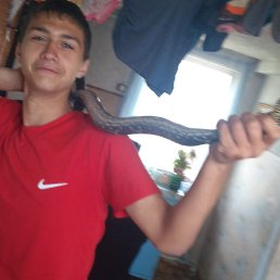 Дмитрий плетюшкин, 18 лет, Анучино