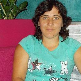 Елена, 35 лет, Кременчуг
