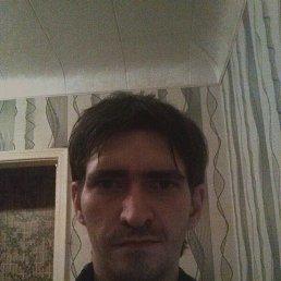 Илья, 29 лет, Сафоново