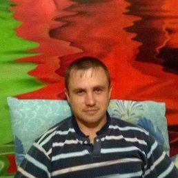 Сергей, 37 лет, Торжок