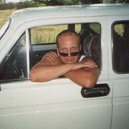 Евгений, 58 лет, Боровичи