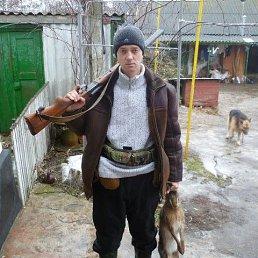 Николай, Симферополь, 36 лет