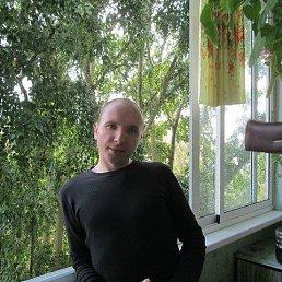 Виктор, 38 лет, Березники