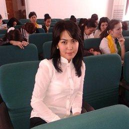Акерке, 28 лет, Кызылорда