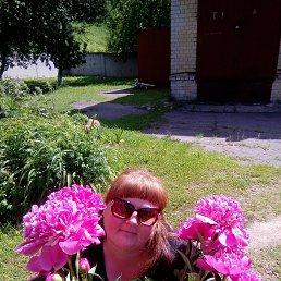 Светлана, 32 года, Торжок