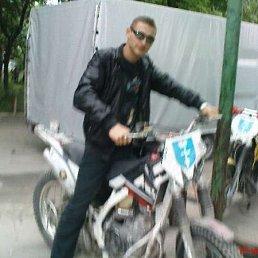Александр Плугатырь, 30 лет, Енакиево