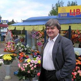 Анатолий, Москва, 67 лет
