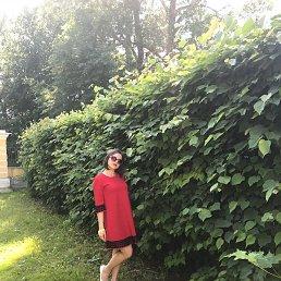 Светлана, 23 года, Истра