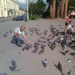 Алексей, 48 лет, Белгород-Днестровский
